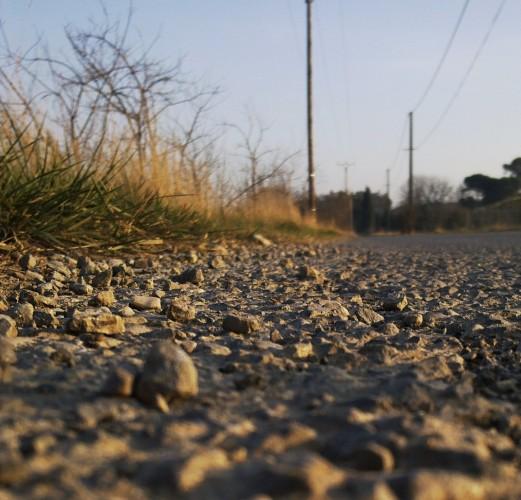 Chemin de vie (12 janvier 2012)