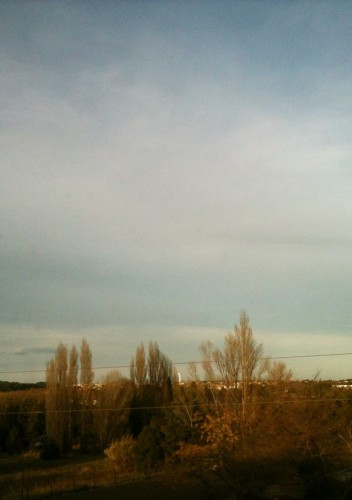 Lumière de fin d'après-midi, Castelnau-Le-Lez (19 janvier 2012)