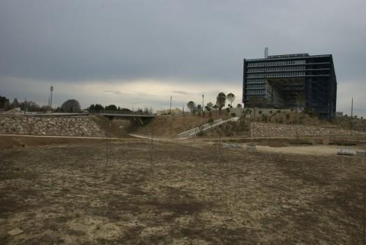 Parc de l'Hôtel de Ville, Montpellier (4 mars 2012)