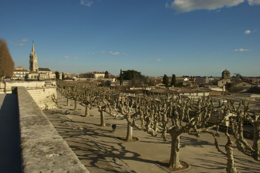 Ste Anne depuis le Peyrou, Montpellier (5 mars 2012)
