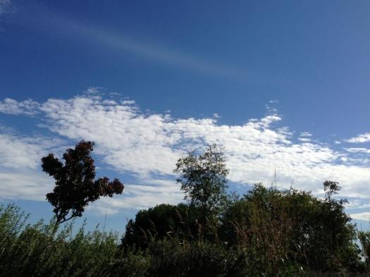 Castelnau-le-Lez (8 octobre 2012)