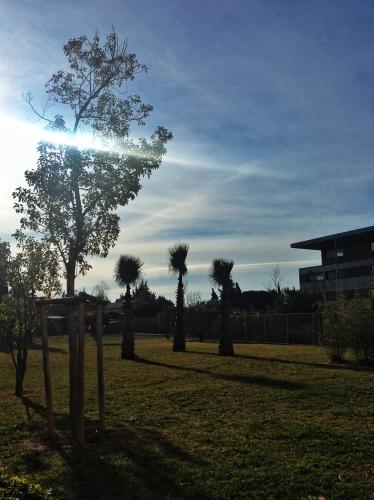 Espace de détente, Castelnau-le-Lez (24 janvier 2013)