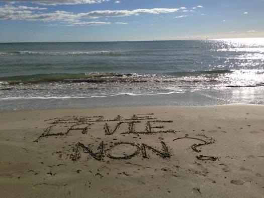 Un message d'espoir sur la plage, Carnon (15 février 2013)