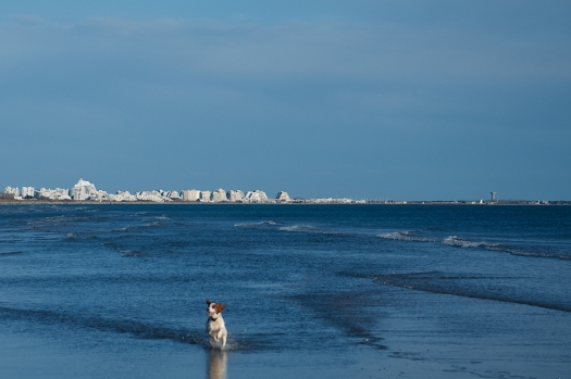 La plage du Petit Travers, Carnon (3 février 2014)