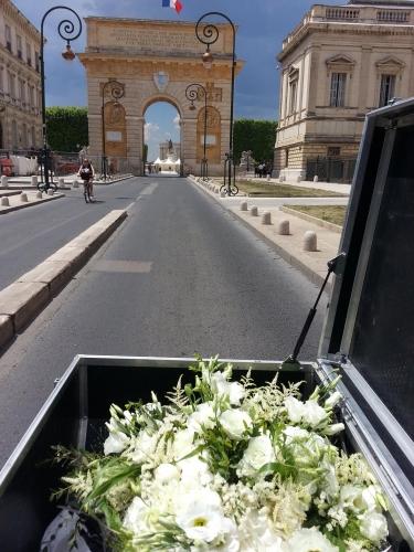 Livraison de fleurs en vélo, Montpellier (13 juin 2014)