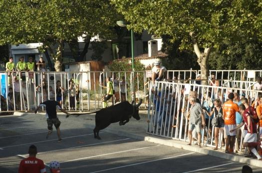 Encierro, Le Crès (16 août 2014)